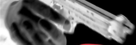 Брутално сведоштво за култот кон оружјето